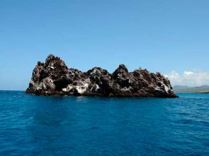 Devil's Crown, FLOREANA ISLAND - The Galapagos Islands